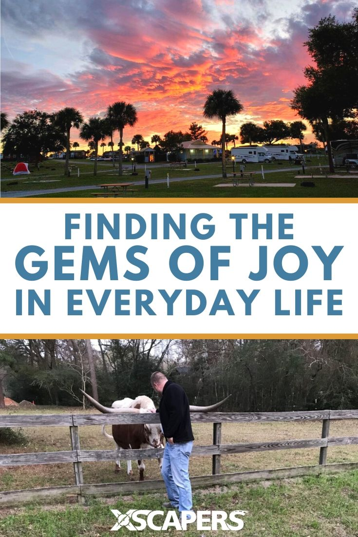 Finding the Gems of Joy in Everyday Life 6